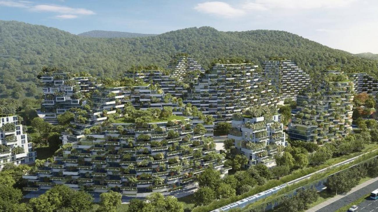Esta cubierta vegetal contribuirá a mejorar la calidad del aire y disminuirá la temperatura media. Foto: EFE